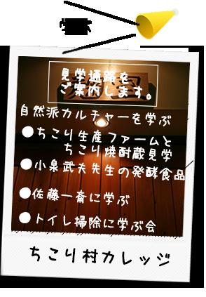 blog/?cat=8