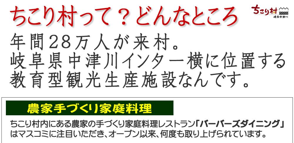 【ちこり村ってどんなところ?】 岐阜県中津川市の中津川インターすぐ横、教育型観光生産施設です。