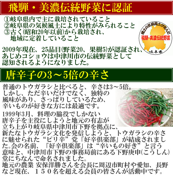 飛騨・美濃伝統野菜に認定のあじめコショウを使用