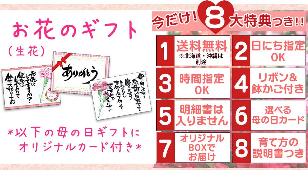 8大特典お花のギフト・カードが選べます