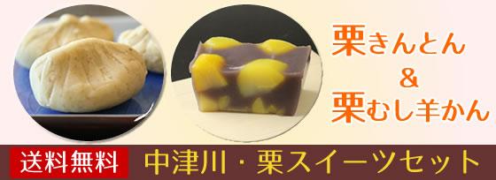 【季節限定】中津川の栗スイーツセット【送料無料】