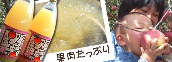 山の上のりんごジュース「すりおろし」2本セット【送料無料】