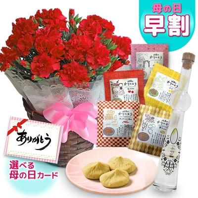 無料 日 母 送料 の 花 母の日花束ブーケ格安激安送料無料千円台からのおすすめおしゃれ5選